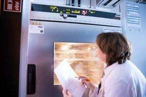 Erwärmung von Kunststoffen und Hybridkörpern zur Weiterverarbeitung in der Laborpresse oder zur Vorbehandlung für die Thermoanalytik.